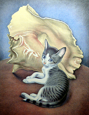 Cat with Conch Shell